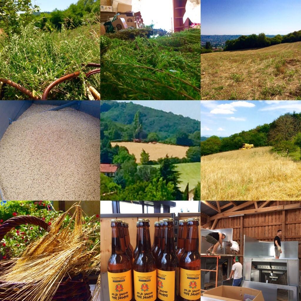 Les Moissons ...pour la Bière Bio Mont d'Or et la Green Bulles Bio